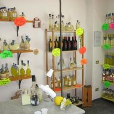 Neapel-Tipp: Besuch einer Limoncello-Fabrik