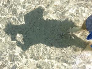 Das Wasser in der Bucht von Porto Conte ist so klar, dass man bis auf den Grund sehen kann (© Redaktion - Portanapoli.com)