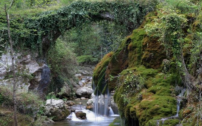 Diese Brücke führt hinunter zum Wasserfall