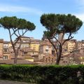 Panorama von Siena (Toskana)